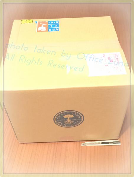 NYR_New Year Box all.jpg